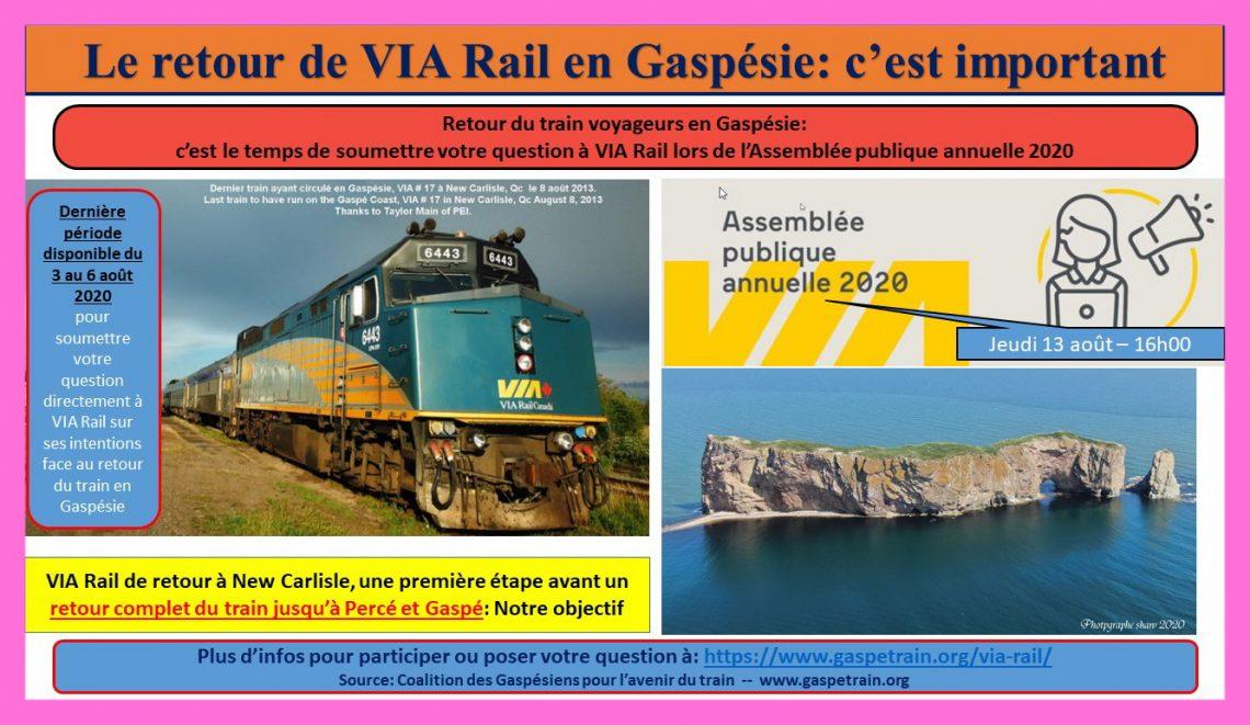 2020-08-13 - VIA APA 2020 - promotion Percé bor